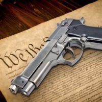 constitution_gun-600x400